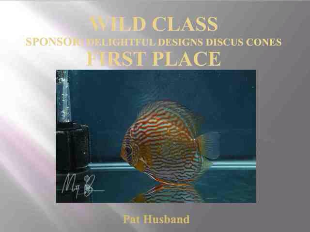 2014 1st Place - Wilds Class Discus